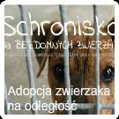 Adopcja zwierzaka na odległość